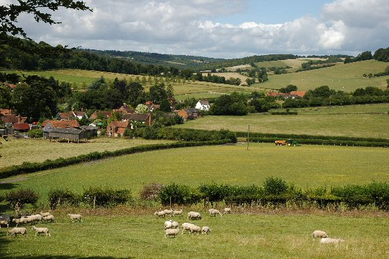 Fingest Valley, The Chilterns - Area of Outstanding Natural Beauty, Bucks