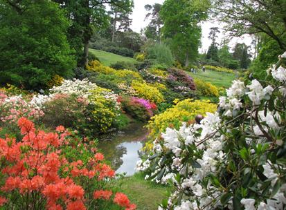 Leonardslee Gardens, Handcross, West Sussex, High Weald AONB
