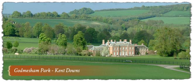 Godmesham Park - Kent Downs AONB, Kent, England