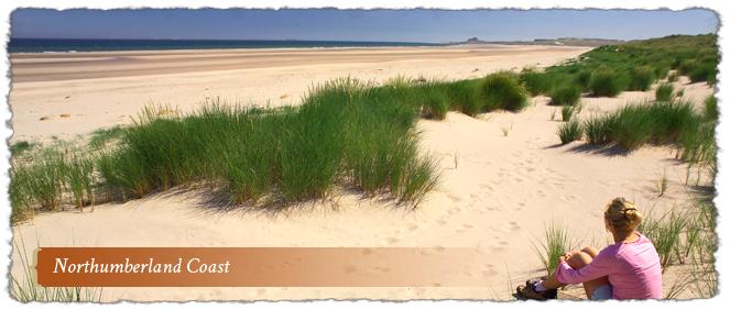 Northumberland Coast AONB, Northumberland, England
